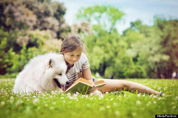 개에게 배울 수 있는 교훈