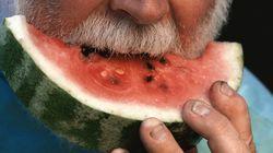 수박과 참외는 신장질환자에게