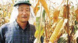 한국이 홀대한 세계적 '옥수수 박사', 중국이 냉큼