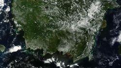 세계 최대 열대우림