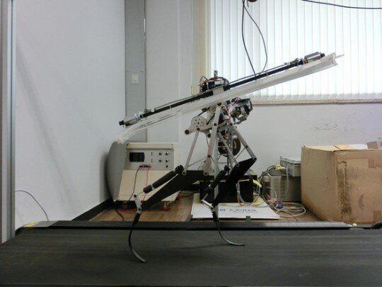 시속 46㎞...카이스트, 세계에서 가장 빠른 로봇 개발(사진,
