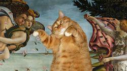 보티첼리가 그린 '고양이의 탄생'?