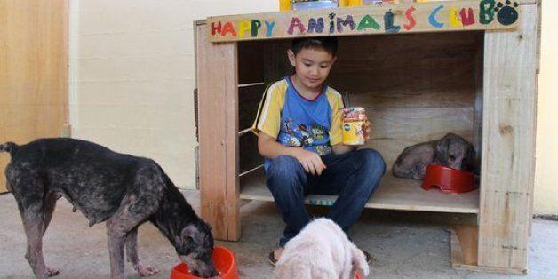필리핀의 행복한 동물 클럽 : 동물을 사랑하는 9살 소년이 만든
