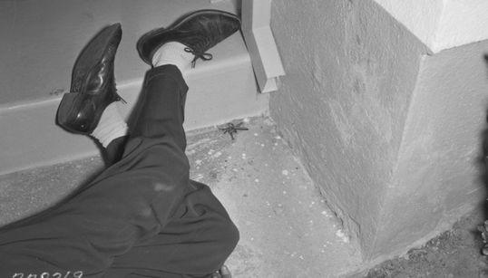 LA경찰이 찍은 범죄 현장, 느와르 영화의 스틸이
