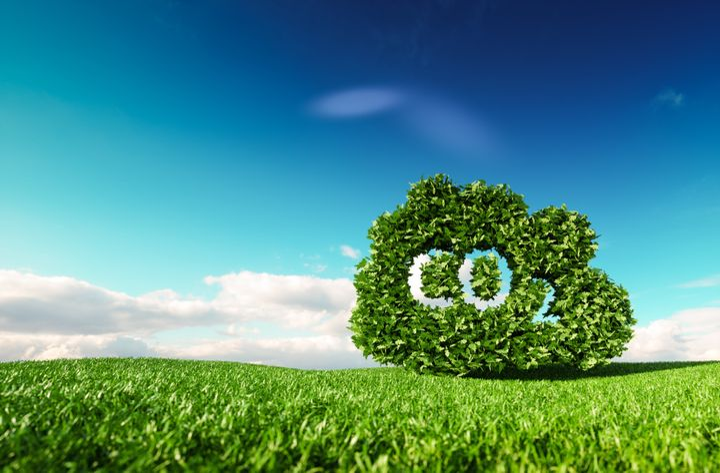 """Des solutions crées par des sociétés comme Total ou Shell tentent de réduire l'émission carbone des """"polleurs"""" mais pourraient poser d'autres problèmes notamment en termes de biodiversité ou de prise de conscience."""
