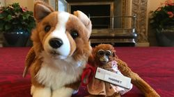 Queen Elizabeth Returns Lost Toy Monkey To Australian