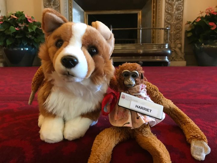 Harriet arrived back home with a new friend, a stuffed corgi from the palace gift shop.
