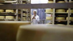 Τα τυριά Παρμεζάνα και Γκράνα Παντάνο παράγονται «μέσα στον πόνο» καταγγέλλει