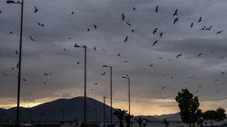 Ο μεσογειακός κυκλώνας «Ζήνων» διαδέχεται την «Ευρυδίκη»: Συνεχίζεται η