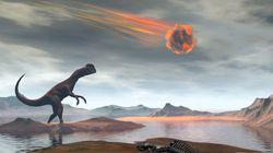 Έρευνα: Οι άνθρωποι ίσως να μην υπήρχαν εάν ο μετεωρίτης που εξαφάνισε τους δεινόσαυρους είχε πέσει