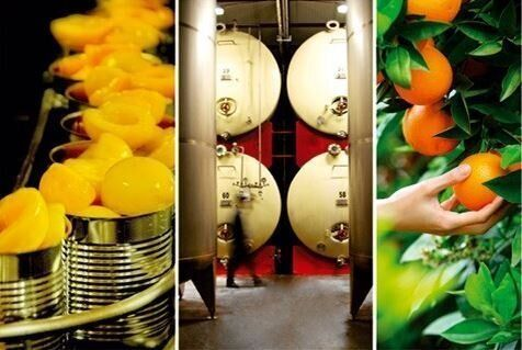 CHB Group: Τα προϊόντα μιας οικογενειακής επιχείρησης εξαγωγής ελληνικών φρούτων κατακτούν τις διεθνείς