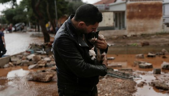 Κάτοικος σώζει ένα σκύλο και μία γάτα για να γλιτώσουν από τις φονικές πλημμύρες στη δυτική
