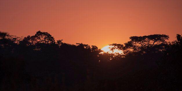 Raising Sun over Trees, Kasungu National Park,