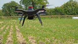 Αυτόματο ρομποτικό αγρόκτημα: Από το φύτεμα ως τη συγκομιδή χωρίς ανθρώπινο