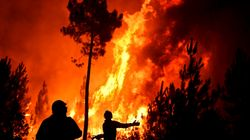440 πυρκαγιές, δεκαάδες νεκροί και 2.000.000 στρέμματα βλάστησης στάχτη στην