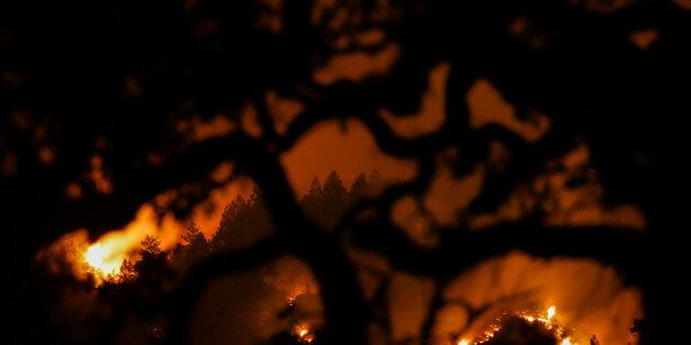KENWOOD, CA - OCTOBER 16: The Nuns Fire is seen on a hillside through the branches of a tree on Oct....