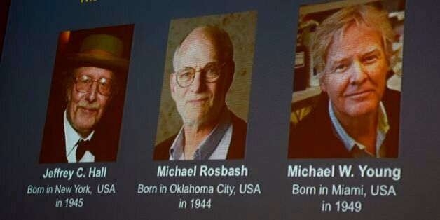 Winners of the 2017 Nobel Prize in Physiology or Medicine (L-R) Jeffrey C Hall, Michael Rosbash and Michael...