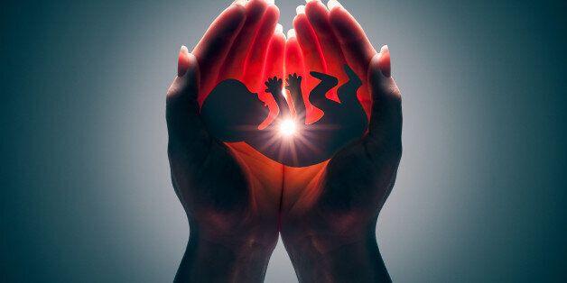 embryo silhouette in woman