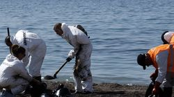 Τα ελληνικά ΑΕΙ στη «μάχη» κατά της πετρελαιοκηλίδας: «Πετρελαιοφάγα» βακτήρια, μπορούν να καθαρίσουν φυσικά τον