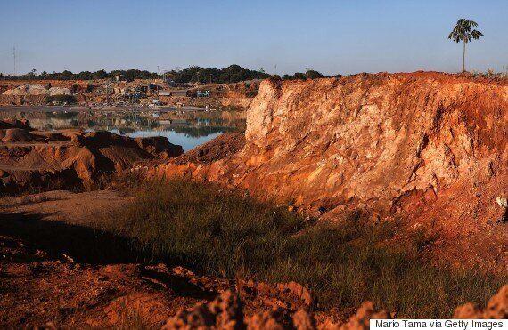 Η Βραζιλία «παραδίδει» τα δάση του Αμαζονίου σε εταιρείες εξορύξεων. Παγκόσμια εκστρατεία και συλλογή