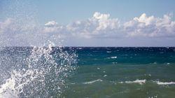 Κρήτη: Ψάρια δάγκωσαν λουόμενες σε παραλία του
