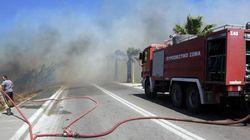 Σε εξέλιξη οι πυρκαγιές στη Ζάκυνθο και στη Νεμέα. Φωτιές και σε Φθιώτιδα και