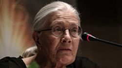 Η Vanessa Redgrave στην Αθήνα: Οι κυβερνήσεις οφείλουν να εκπαιδεύουν τους πολίτες για το προσφυγικό και όχι να τους χαϊδεύου...