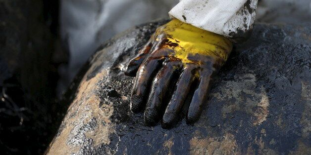 A worker's gloved hand is seen covered with oil during a clean-up operation after oil leaked from a cargo...