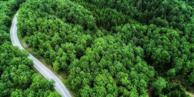 Να ανακληθεί η υπουργική απόφαση για τις οικιστικές πυκνώσεις ζητά ο διευθυντής της WWF