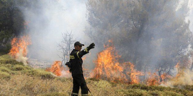 ATHENS, GREECE - AUGUST 15: Firefighters battle with a wildfire which has been continuing for two days,...