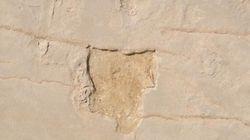 Κρήτη: Έκλεψαν τα αποτυπώματα από τις πρώτες πατημασιές του