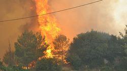 Δεύτερη νύχτα μάχης με τις φλόγες: Συνεχίζεται ο σκληρός αγώνας για την κατάσβεση των πυρκαγιών στη