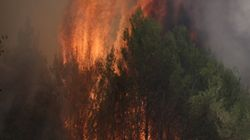 Σε ύφεση οι πυρκαγιές σε Ηλεία και