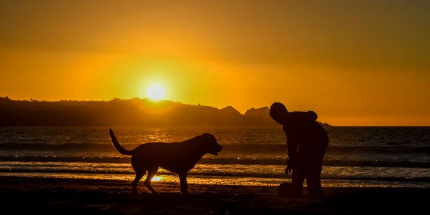 A boy plays with his dog at sunset in La Serena, about 450 km north of Santiago, on September 3, 2017....