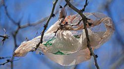 Γιατί η χρέωση της πλαστικής σακούλας είναι κέρδος για
