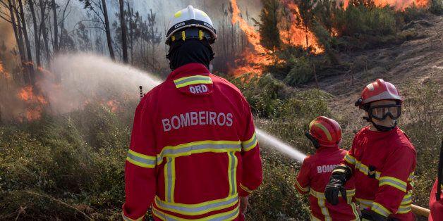 VILA DE REI, PORTUGAL - AUGUST 14: Portuguese firefighters combat flames at a forest fire on August 14,...