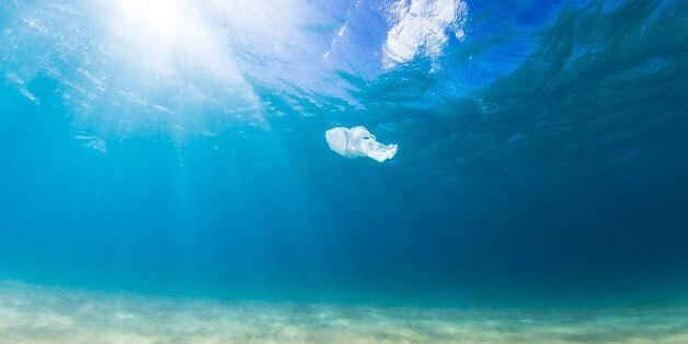 A plastic bag drifts in the clear blue ocean on a sunny day as a result of human pollution. Perfect for...