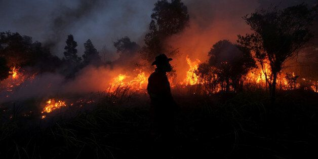 A firefighter tries to extinguish a bush fire in Ogan Ilir regency, South Sumatra, Indonesia August 4,...