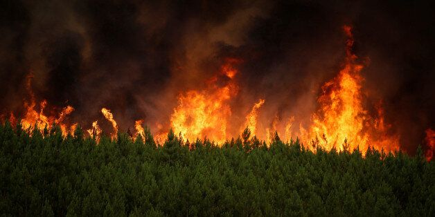 Flames of an approaching forest fire are seen near the village of Carvoeiro, near Castelo Branco, Portugal,...