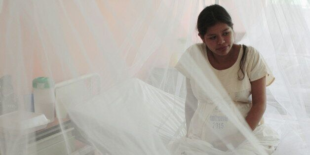 A pregnant woman looks on as mosquito nets are used at the Women National Hospital in an effort to prevent...