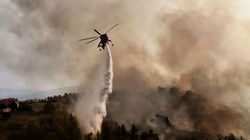Εφαρμόζονται άμεσα τα μέτρα αντιμετώπισης των επιπτώσεων πυρκαγιάς στην Ανατολική