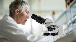 Δημιουργία σπερματοζωαρίων από βλαστοκύτταρα ανοίγει το δρόμο για τη θεραπεία της ανδρικής