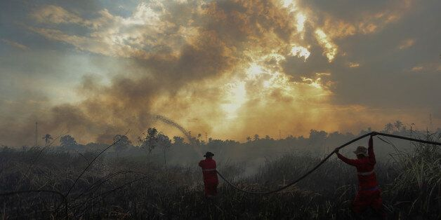 Firefighters try to extinguish a bush fire in Ogan Ilir regency, South Sumatra, Indonesia August 4, 2017...