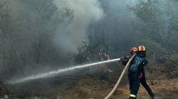 Σε ύφεση πυρκαγιές σε Μαρκόπουλο και Κυπαρισσία. Υπό μερικό έλεγχο η φωτιά στις