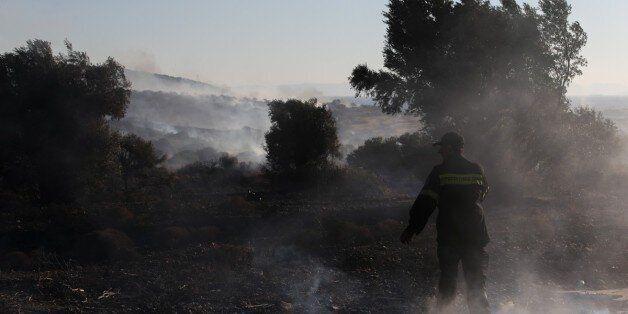 Σε ύφεση η πυρκαγιά στην Ανάβυσσο, σε εξέλιξη η φωτιά στις