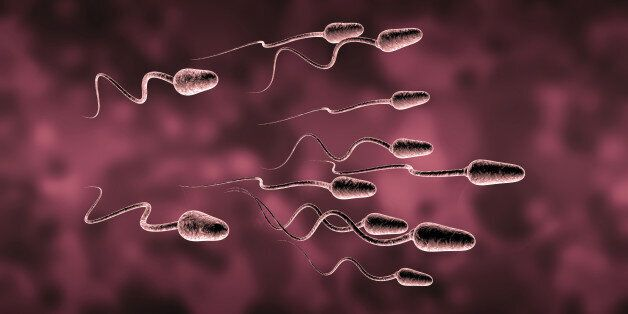 Natural insemination sperm and egg