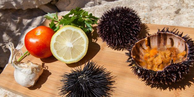 Fresh Sea Urchin served with mediterranean lemon, tomatoes, garlic, parsley, on wooden plate in stone...