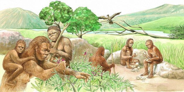 Homo habilis men chip away at rocks, sharpening them for cutting up game or scraping hides. The game...