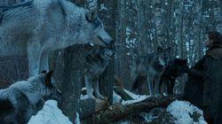 Οι δημιουργοί του Game of Thrones εξήγησαν τι σημαίνει η τελευταία ατάκα που είπε η Arya στη Nymeria (και ράγισε τις καρδιές