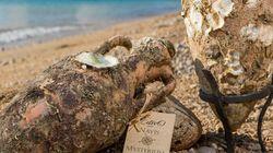 Κρασί από τον πάτο της θάλασσας: Το οινοποιείο που χρησιμοποιεί τον βυθό ως